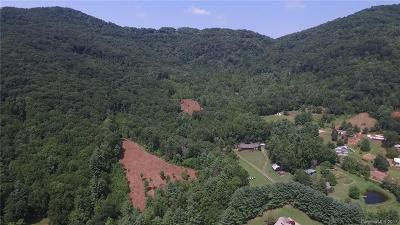 Asheville Residential Lots & Land For Sale: Parker Road