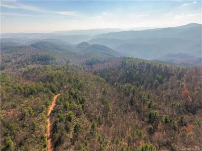Burke County, Caldwell County, Watauga County, Avery County, Ashe County Residential Lots & Land For Sale: Wildcat Road