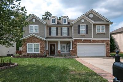 Mint Hill Single Family Home For Sale: 5944 Brightstar Valley Road