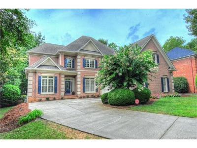Ballantyne, Ballantyne Country Club, Ballantyne Meadows Single Family Home For Sale: 15707 Strickland Court