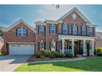 Mint Hill Single Family Home For Sale: 10820 Bask Court