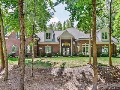 Davidson Single Family Home For Sale: 17601 River Ford Drive