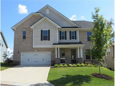 Fort Mill Single Family Home For Sale: 2024 Bosna Lane