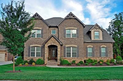 Indian Land Single Family Home For Sale: 8161 Clems Branch Road
