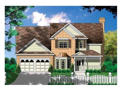 Charlotte Single Family Home For Sale: 10117 Meridale Crossing Drive