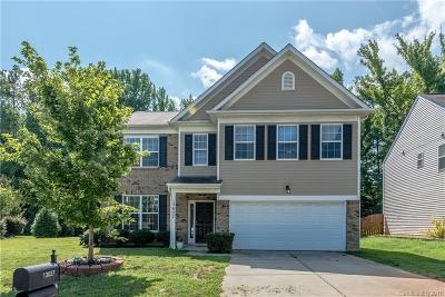 Charlotte Single Family Home For Sale: 13027 Rothe House Road