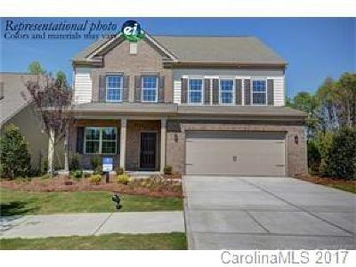 Statesville, Charlotte, Mooresville Single Family Home For Sale: 10417 Ebbets Road #Lot 144