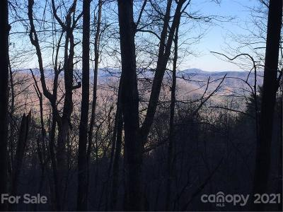 Caldwell County Residential Lots & Land For Sale: 6025 Buffalo Mountain Road
