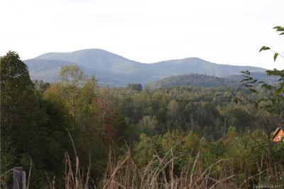 Henderson County Residential Lots & Land For Sale: 9999 Southern Scenic Heights Trail #2R