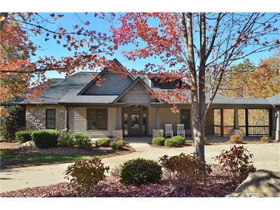 Hendersonville Single Family Home For Sale: 113 Cummings Crest #74
