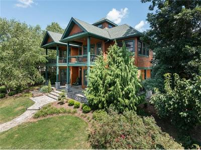 Weaverville Single Family Home For Sale: 3 Gale Kelly Court