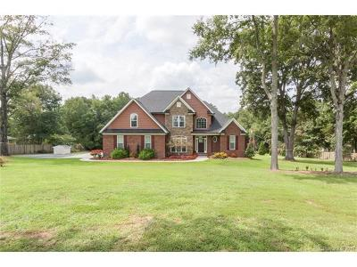 Mint Hill Single Family Home For Sale: 10033 Arlington Church Road