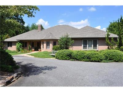 Tryon NC Single Family Home For Sale: $595,000