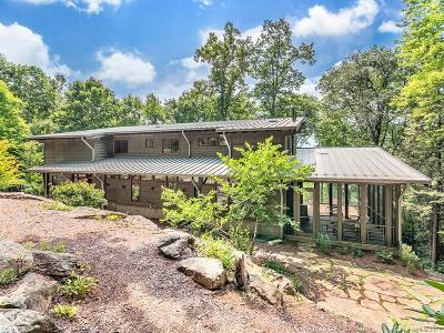 Asheville Single Family Home For Sale: 170 Merrills Ridge Road