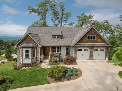 Hendersonville Single Family Home For Sale: 162 Summit Hill Road