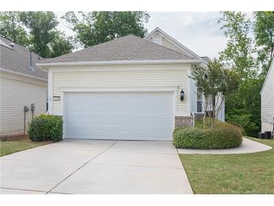 Indian Land Single Family Home For Sale: 17491 Hawks View Drive