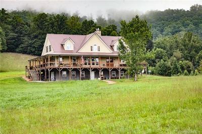 Hendersonville Single Family Home For Sale: 151 Jd Hogg Lane