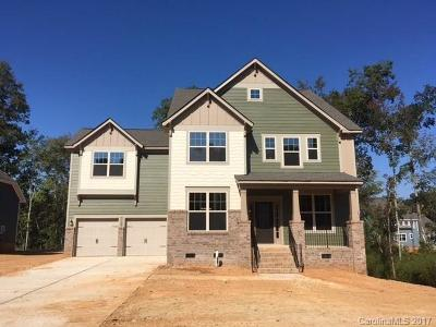 Waxhaw Single Family Home For Sale: 1713 Great Road #995