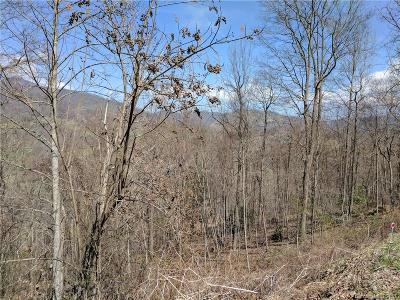 Haywood County Residential Lots & Land For Sale: Lot #20 Winfield Drive #20