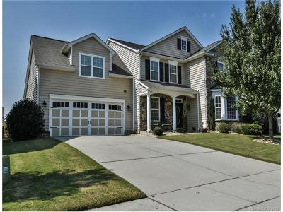 Waxhaw Single Family Home For Sale: 1528 Ridge Haven Road