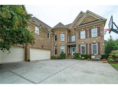 Waxhaw Single Family Home For Sale: 7308 Stonehaven Drive