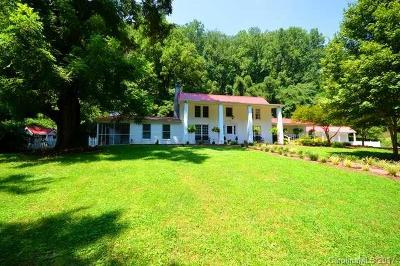 Tryon Single Family Home For Sale: 1980 Warrior Drive
