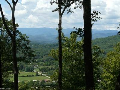 Hendersonville Residential Lots & Land For Sale: Sky Valley Road
