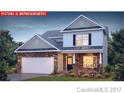 Mecklenburg County Single Family Home For Sale: 6515 Sloan Creek Court #9