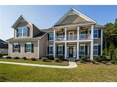 Tega Cay Single Family Home For Sale