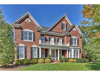 Huntersville Single Family Home For Sale: 206 Dennehy Court #198