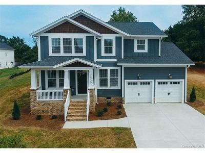 Cornelius Single Family Home For Sale: 20220 Bethel Church Road