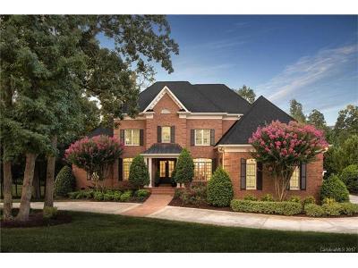 Matthews, Weddington Single Family Home For Sale: 2040 Kings Manor Drive