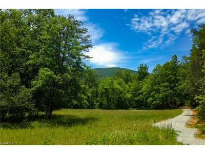 Mill Spring Residential Lots & Land For Sale: 1138 State Road