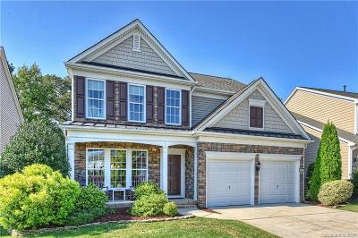 Cabarrus County Single Family Home For Sale: 10812 River Oaks Drive