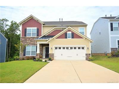 Fort Mill Single Family Home For Sale: 599 Brookhaven Drive
