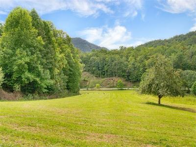Bryson City Residential Lots & Land For Sale: Mason Branch Road