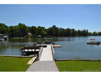 Charlotte, Gastonia, Tega Cay, Fort Mill, Lake Wylie, York Single Family Home For Sale: 207 Riverview Terrace
