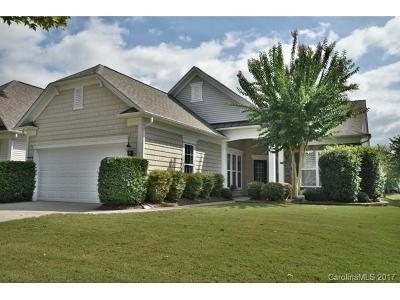 Indian Land Single Family Home For Sale: 55354 Derringer Avenue