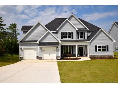 Statesville Single Family Home For Sale: 129 Wylie Trail