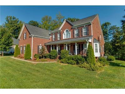 Denver Single Family Home For Sale: 7915 Harbor Master Court