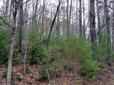 Bryson City Residential Lots & Land For Sale: Lot #1 Cheoah View Road #1