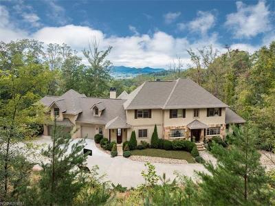 Asheville Single Family Home For Sale: 433 Coopers Hawk Drive