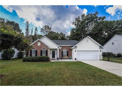 Charlotte Single Family Home For Sale: 8903 Bryson Bend Drive