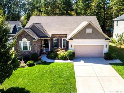 Lake Wylie Single Family Home For Sale: 535 Spruce Hollow Lane