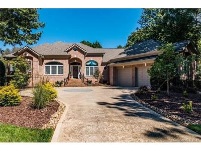 Cornelius Single Family Home For Sale: 19202 Peninsula Shores Drive