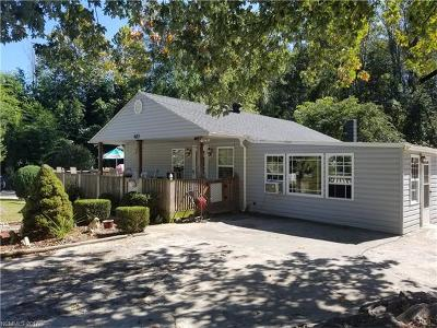 Asheville Single Family Home For Sale: 423 State Street