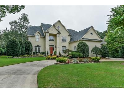 Charlotte Single Family Home For Sale: 10923 Pound Hill Lane