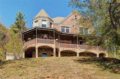 Asheville Single Family Home For Sale: 176 S Delano Road