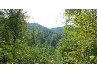 Hot Springs Residential Lots & Land For Sale: 40 Acres Meadow Fork Road