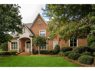 Ballantyne, Ballantyne Country Club, Ballantyne Meadows Single Family Home For Sale: 10720 Alexander Mill Drive